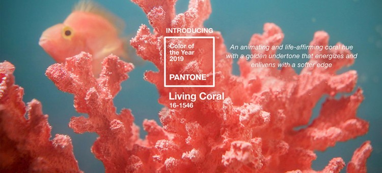pantone-16-1546-Living-Coral-colour-of-2019-year